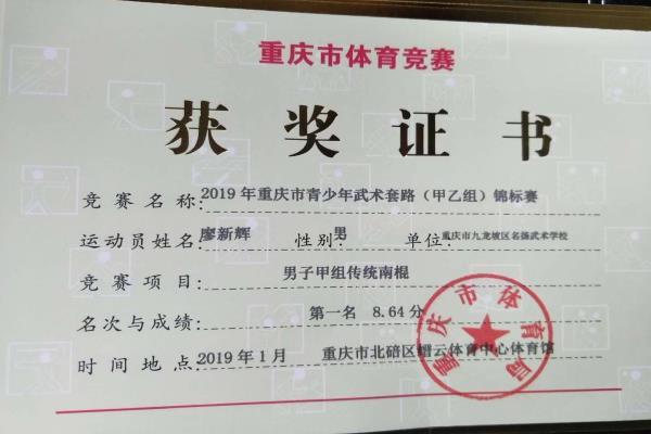 2019年重庆市武术套路锦标赛